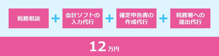 税務相談+会計ソフトの入力代行+確定申告書の作成代行+税務署への提出代行 12万円